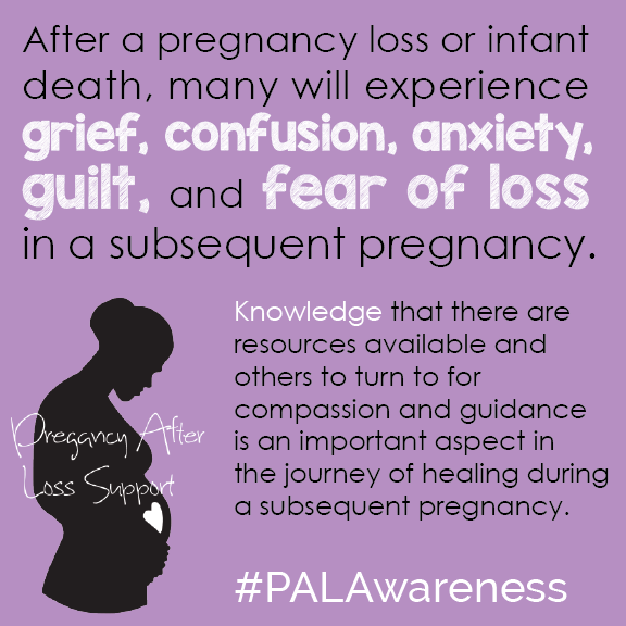 PAL_Awareness_Knowledge