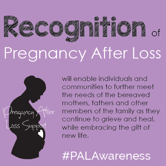 PAL_Awareness_Recognition