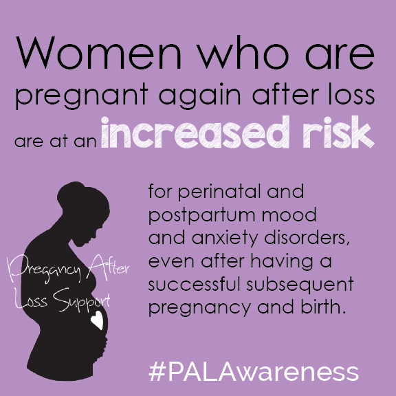 PAL_Awareness_Risk