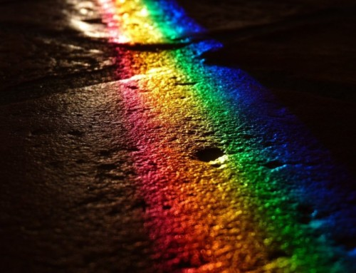 A Rainbow in the Darkness
