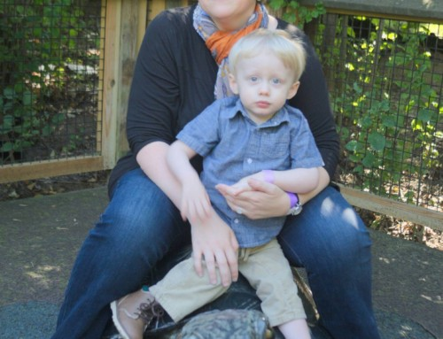 Life With Noah: Holding on to Hope