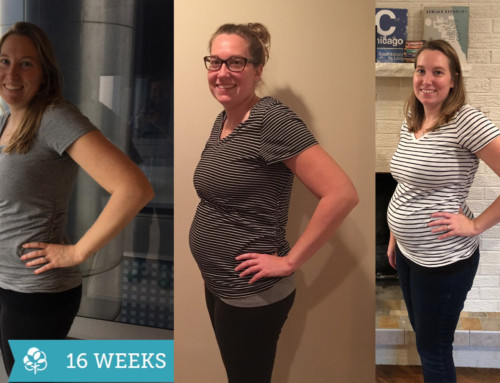 Kasey's Bump Day Blog, Week 16: Different Pregnancy, Same Fear