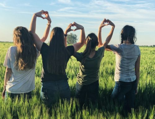 Tips from PAL Moms: Joining a Pregnancy after Loss Support Group