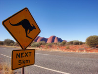Australia's Senate Report on Stillbirth Research and Education illustrated by a kangaroo crossing picture.