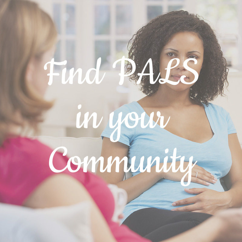 Find PALS in your community