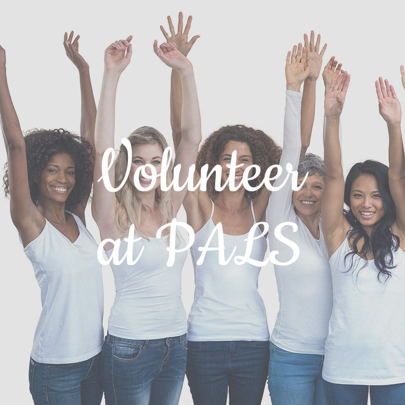 Volunteer at PALS