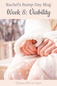 Rachel's Bump Day Blog, Week 8: Viability check of a new pregnancy