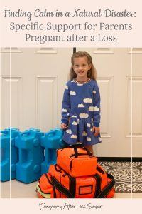 Finding Calm in a Natural Disaster: Specific Support for Parents Pregnant after a Loss