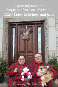 gestational carrier after loss, week 13: 2020 Vision (with hope and fear)