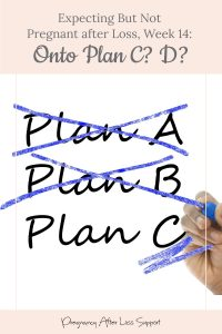 Gestational Carrier after Loss, Week 14: Onto Plan C