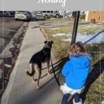 Little girl walking her dog - Rachel's Bump Day Blog, Week 27: Nesting