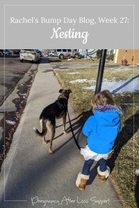 Little girl walking her dog - Rachel's Bump Day Blog, Week 27: Nesting