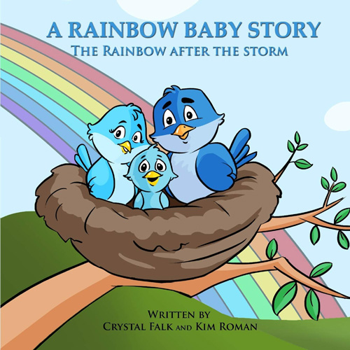 A Rainbow Baby Story: The Rainbow After The Storm book cover