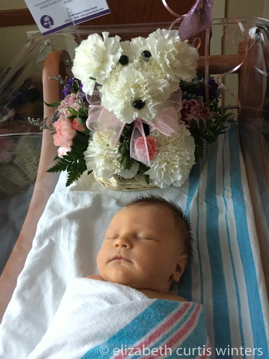 Newborn photo taken in the hospital - Taking Your Own Stunning Newborn Photos During Quarantine