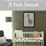 baby's nursery - gestational carrier, week 38: It Feels Surreal