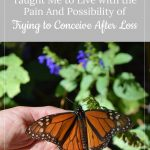 Butterfly - Raising Butterflies taught about Pain and Possibility while trying to conceive after loss