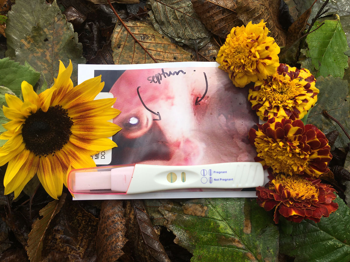 pregnancy test and flowers - Libby's Week 7 Bump Day Blog: What Grief has Taught Me to Do