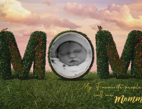 """Mary's Bump Day Blog, Week 23: The """"Loss Club"""""""