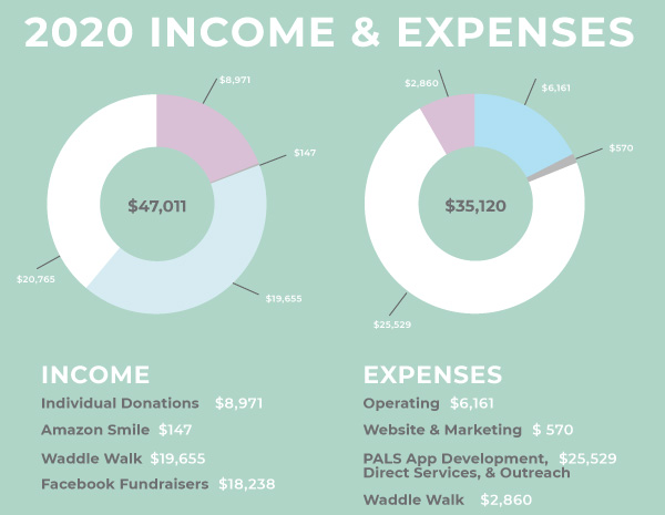 Pregnancy After Loss Support 2020 Annual Report Income and Expenses