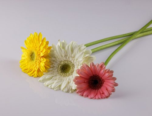 What to Do For a Bereaved Mother on Mother's Day