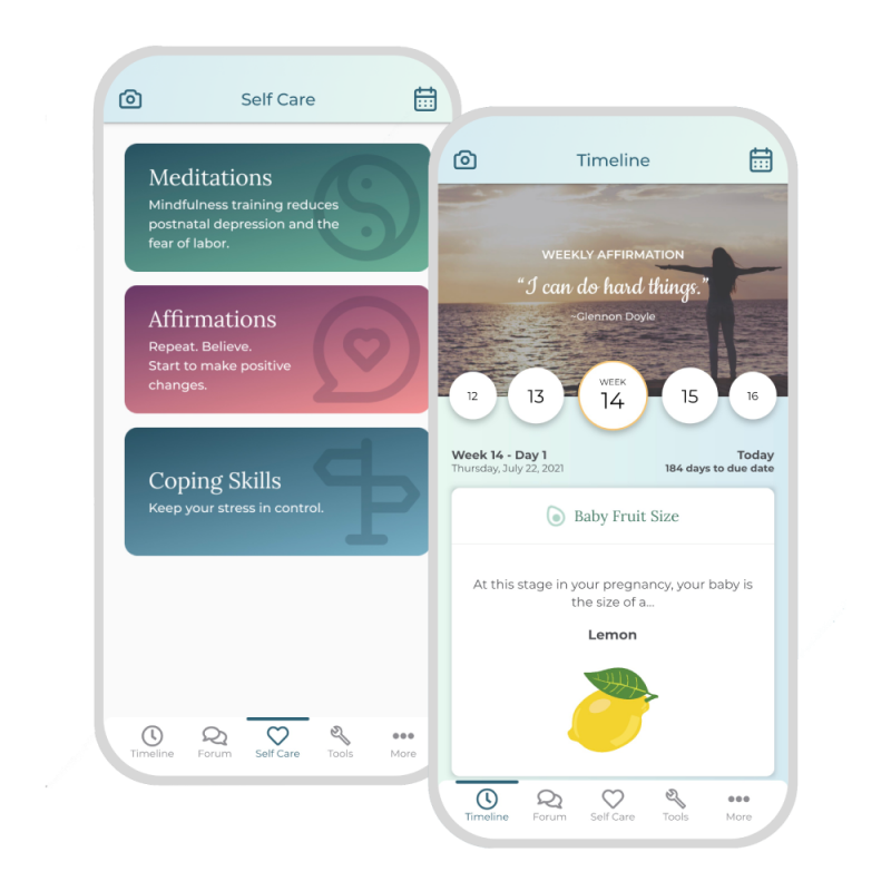 Pregnancy After Loss App - Timeline and Coping Skills