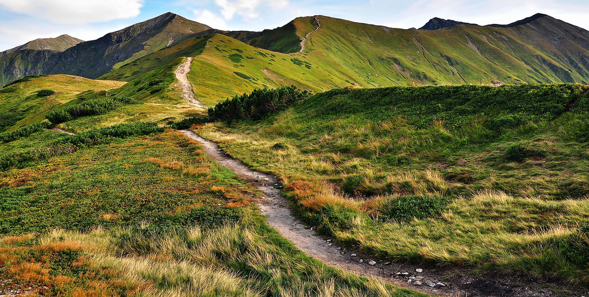 path up a mountain - Taking the Next Steps in beginning pregnancy after loss