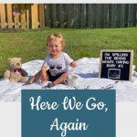Pregnancy Announcement - Elizabeth's Bump Day Blog, Week 14: Here We Go, Again